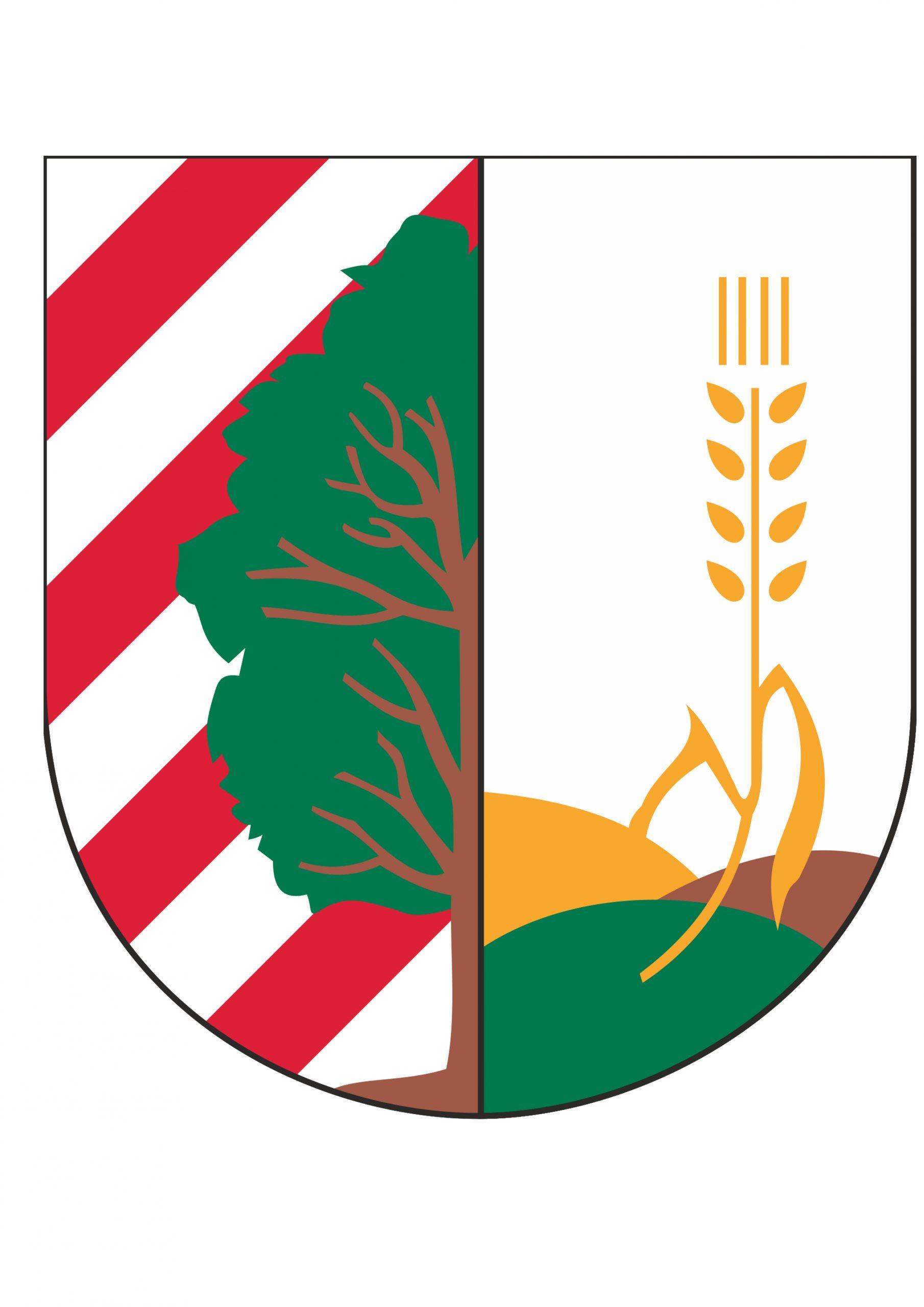 Gmina Baruchowo